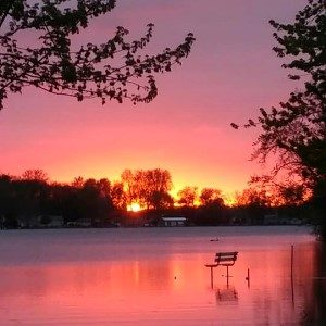 sunset loon lake with bench in water